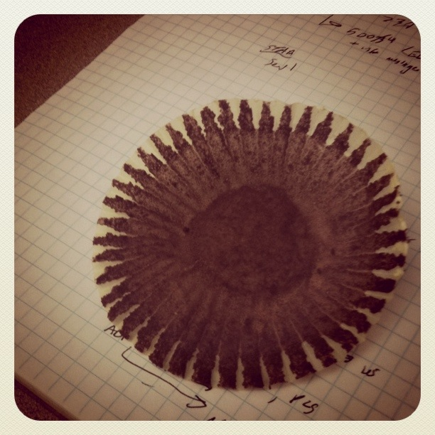 This is an ex-cupcake