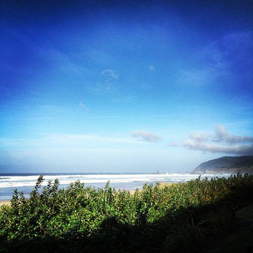 Daytime at the beach